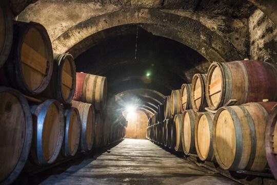 Wijn proeven bij Wijnbar Wijn bij Arentz Nijmegen